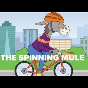 Meet your Posher, THE SPINNING MULE 🐃🚴🏻♂️